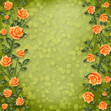 Paper for congratulation with painting rose Stock Photos