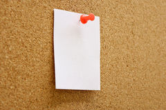 Paper with corkboard. Paper nailed to a corkboard Royalty Free Stock Images