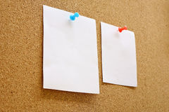 Paper with corkboard. Paper nailed to a corkboard Stock Images