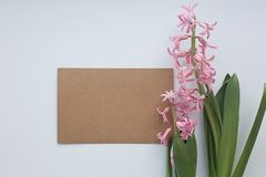 Paper craft blank with pink hyacinth flowers with leaves on white background. Flat lay, copy space, top view. Flowers composition stock photography