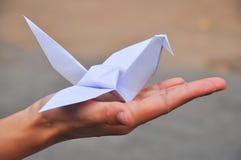Paper crane's stock photo