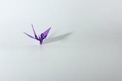 Paper crane  in white background. Volet paper crane  in white background Stock Photo