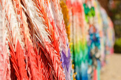 Paper cranes of thousand Stock Image