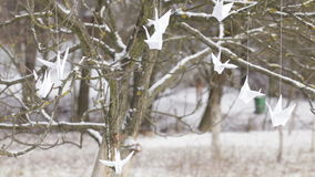 Paper cranes stock footage