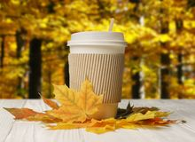 Paper cup and autumn leaves with autumn forest bacground. Paper cup and autumn leaves on white wood table with autumn forest bacground royalty free stock image