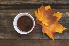 Paper cup with mulled wine on a wooden bench in the park. Maple leaves. Autumn mood Royalty Free Stock Photos