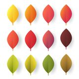 Paper cut autumn leaves set. Fall leaves colorful paper collection. Vector illustration. Royalty Free Illustration
