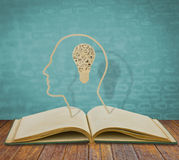 Paper cut of book and  light bulb inside a head Stock Photography