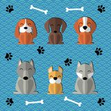 Paper cut cartoon dogs set. Collection of paper cut cute funny cartoon dogs of different breeds.  objects. Vector illustration. Design concept for children Royalty Free Stock Photos
