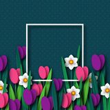 Paper cut spring flowers tulip and narcissus. Royalty Free Stock Photos