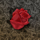 Paper design2. Paper-cut Rose design for background Stock Photos