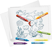 A paper with the different sea creatures and crayons Stock Photo