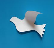 Paper dove. Symbol made of paper with blue background Stock Photography