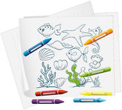 A paper with a drawing of sea creatures and crayons. Illustration of a paper with a drawing of sea creatures and crayons on a white background Royalty Free Stock Photography