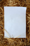 Paper on dry grass. White paper on dry grass Stock Photo