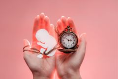 Paper embryo silhouette with chain and clock in woman hands. Light pink background. Soft focus royalty free stock photo