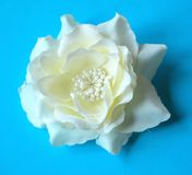Paper-flower Stock Photography