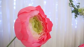 Paper flower decoration. Big corrugated paper flowers hoops rings on the white background and garland home stage design pink yellow green colors stock video