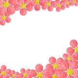 Paper flower frame Royalty Free Stock Image
