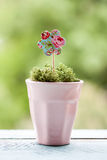Paper flower in a pot Royalty Free Stock Image