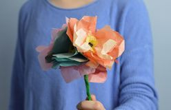 Paper Flowers Stock Photography