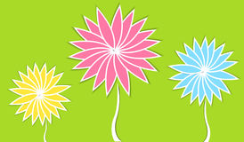 Paper flowers. Colorful paper flowers on green background Stock Images