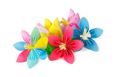 Paper flowers and flower with varicolored petals Stock Images