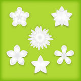 Paper flowers green Stock Images