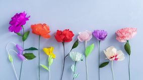 Paper flowers growing stock footage