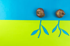 Paper flowers and seedlings. Paper flowers growing from seedlings on blue background Stock Images