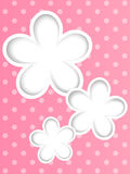 Paper flowers on pink background Stock Images