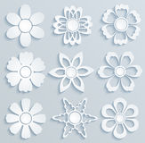 Paper flowers. Set of paper ornaments. Illustration Stock Photo
