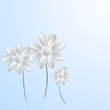 Paper flowers on white background Royalty Free Stock Photo