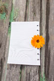 Paper. Flowers and paper on wooden background Stock Photography