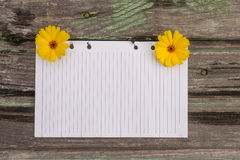 Paper and flowers. Flowers and paper on wooden background Stock Image