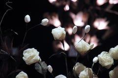 paper foto för härliga blommor mycket Arkivfoton