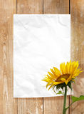 Paper frame. Eith wood texture and sunflower Stock Photo