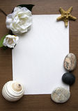 Paper Frame. Frame with Rocks, Seashell and Flower Stock Image