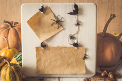 Paper frame decorated with autumn leaves, pumpkins, spiders Royalty Free Stock Images