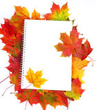 Paper and frame from fall leaves Stock Photography