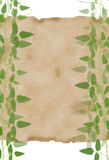 Paper framed by natural green leaves background Stock Photos