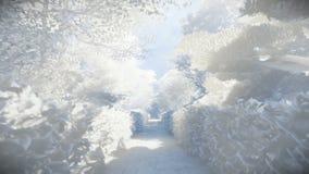Paper garden in winter, sun shining. Hd video stock footage