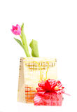 Paper golden package with a tulip Royalty Free Stock Photography