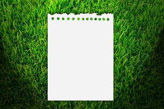 Paper on grass Royalty Free Stock Images
