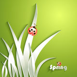 Paper grass with ladybug Royalty Free Stock Images