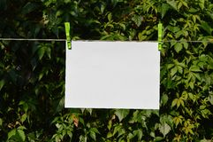 Paper hanging on the line Stock Photos