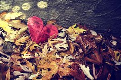A paper heart in a pile of leaves Royalty Free Stock Photos