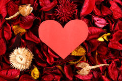 Paper heart on red potpourri Stock Photo