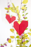 Paper heart on a tree Stock Photography