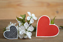 Paper hearts with spring flowers Stock Images